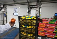 журнал входного контроля пищевых продуктов образец заполнения - фото 9